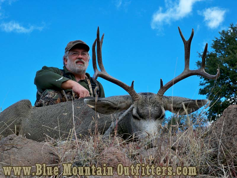 New Mexico Guided Mule Deer Hunt