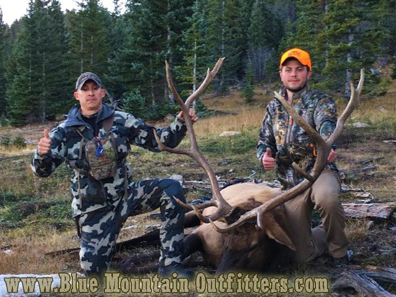 New Mexico Guided Elk Hunt