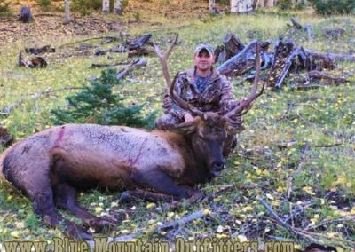 New Mexico Guided Elk Hunt   Blue Mountain Outfitters
